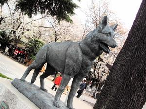 スペインとキリシタン大名と靖国神社と『へうげもの』と日本_b0081338_1410964.jpg