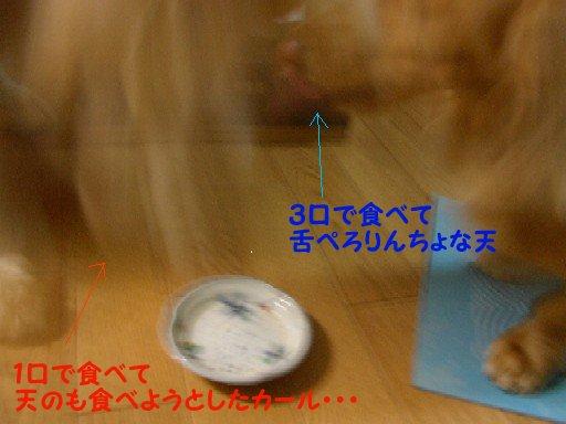 f0086474_23391651.jpg