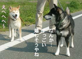 b0057675_1644341.jpg
