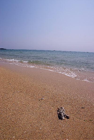 海~~_a0071514_23483198.jpg