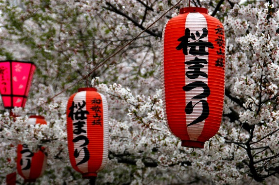 花のある風景_b0093754_03438100.jpg
