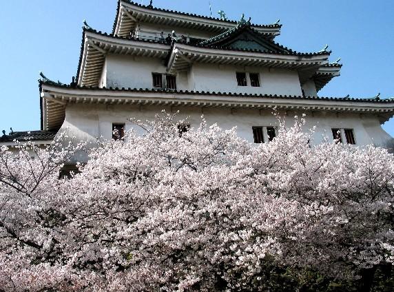花のある風景_b0093754_0345899.jpg