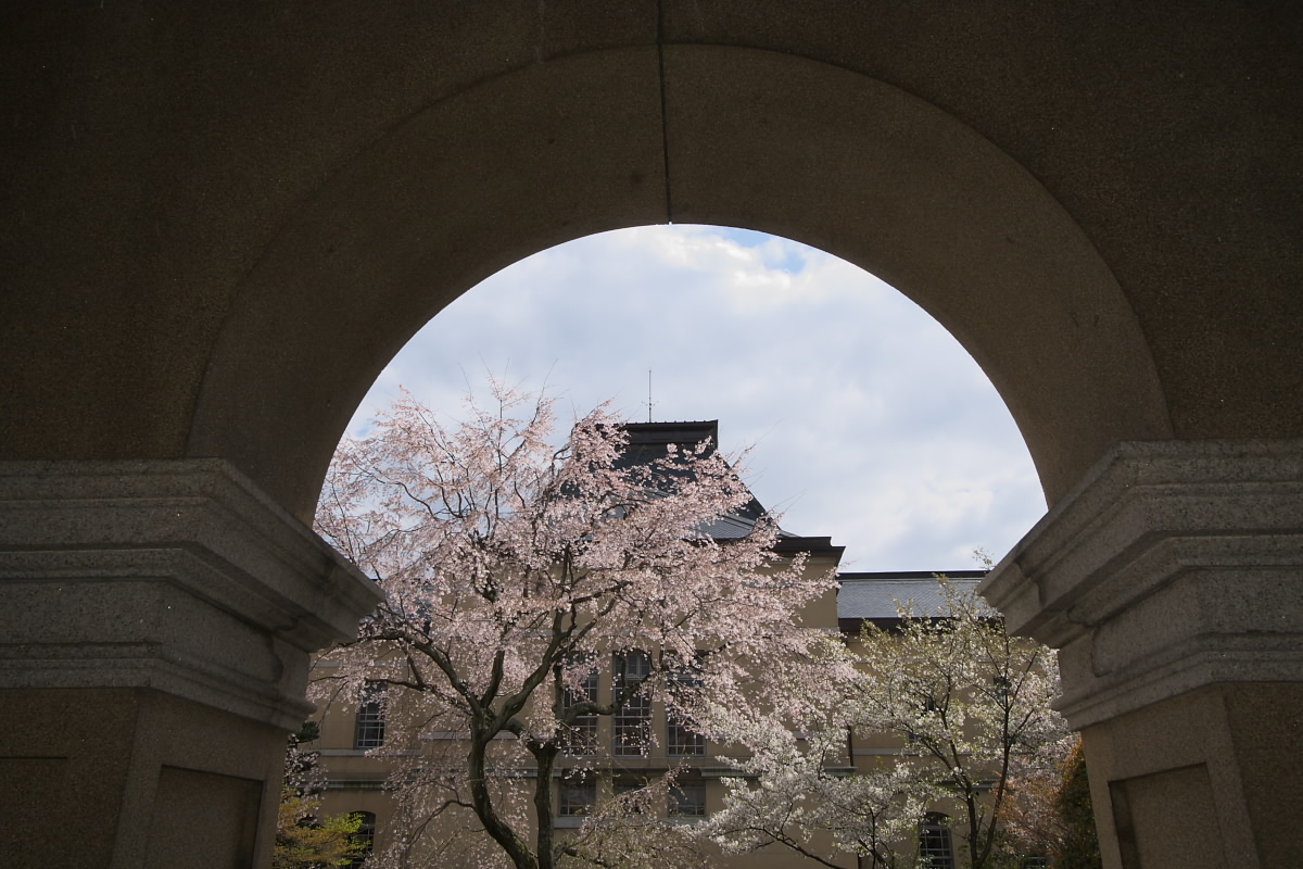 京都府庁 春の一般公開 1_f0021869_121195.jpg