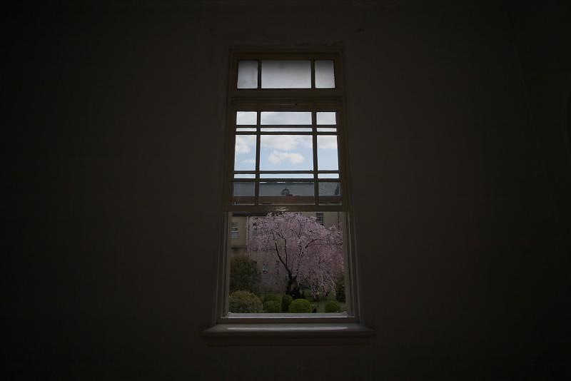 京都府庁 春の一般公開 2_f0021869_12315247.jpg