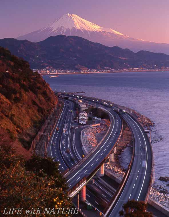 東海道・油井宿_b0093088_745199.jpg