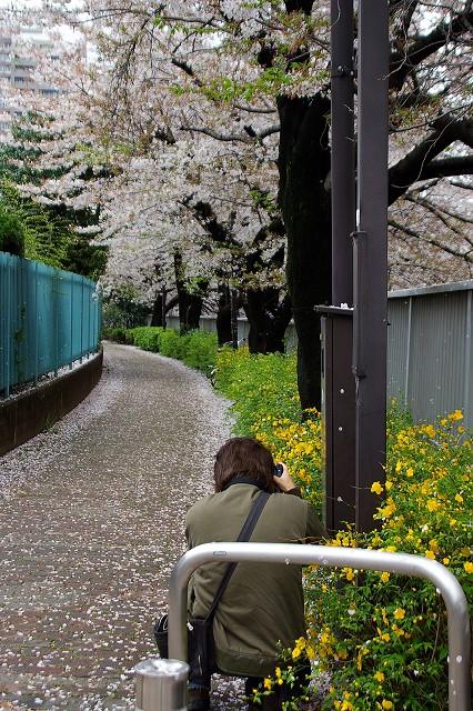 都電で面影橋へ その弐_c0031105_110139.jpg