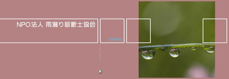 NPO雨漏り診断士協会_d0004728_713983.jpg