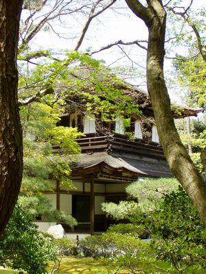 銀閣寺 (かえでの若葉が風に弾んで光ります)_f0012154_21295376.jpg
