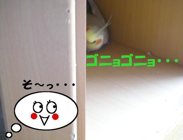 f0132055_0263055.jpg