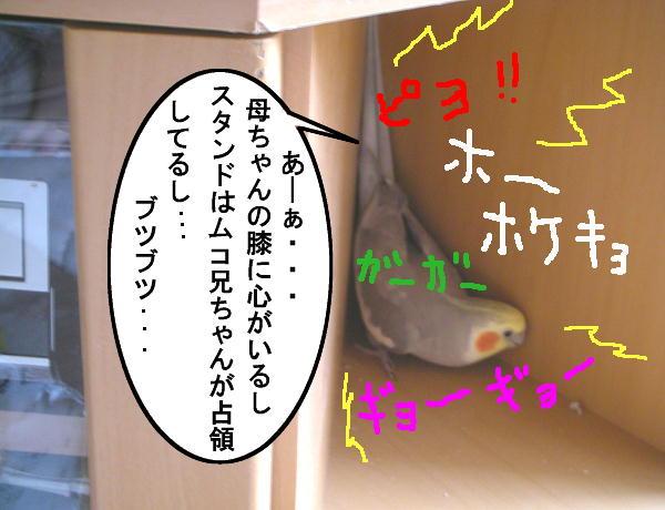 f0132055_0295494.jpg