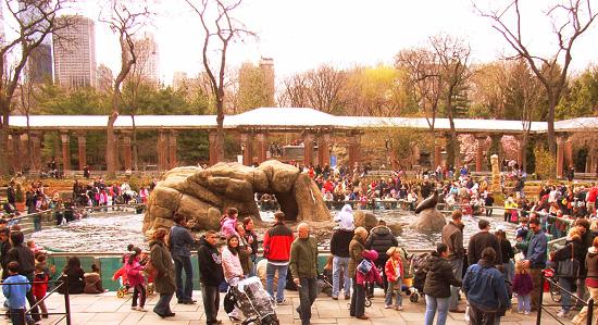 セントラルパーク内にある動物園_b0007805_918531.jpg