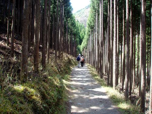 京都一周トレイル 4_e0048413_21301273.jpg