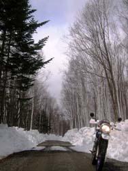 林道調査開始です!_f0096216_18362536.jpg