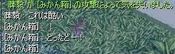 d0084319_9101956.jpg