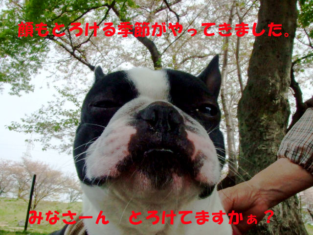 f0059334_93855100.jpg