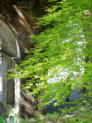 南禅寺 (立派な三門。初めて見た様に感心しました。)_f0012154_1993437.jpg