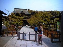 鎌倉トレイルラン_a0036808_1722955.jpg