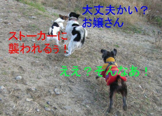 f0053952_1011679.jpg