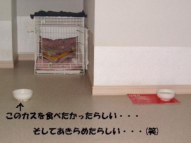 f0025355_21212015.jpg