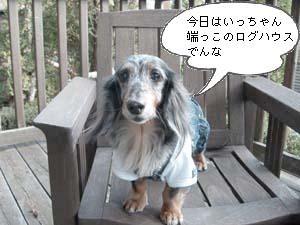 d0020869_19583670.jpg