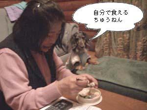 d0020869_2004469.jpg