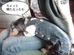 d0020869_200524.jpg