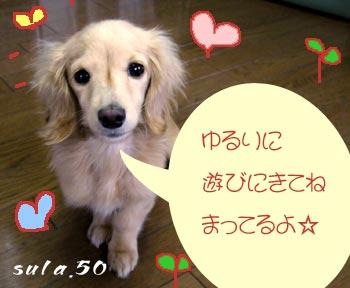 b0066704_1353696.jpg