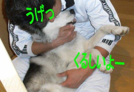 f0112407_1421370.jpg