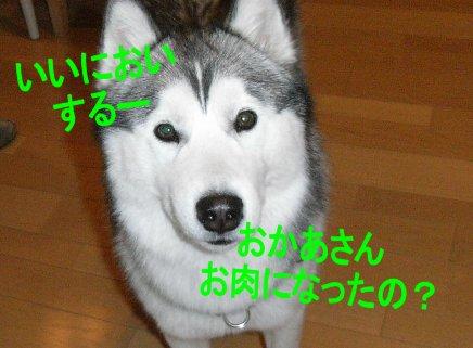 f0112407_23512129.jpg