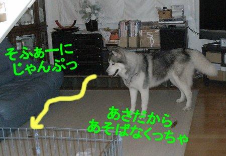 f0112407_23514528.jpg