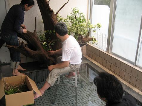 バラ風呂撮影_e0101917_83923.jpg