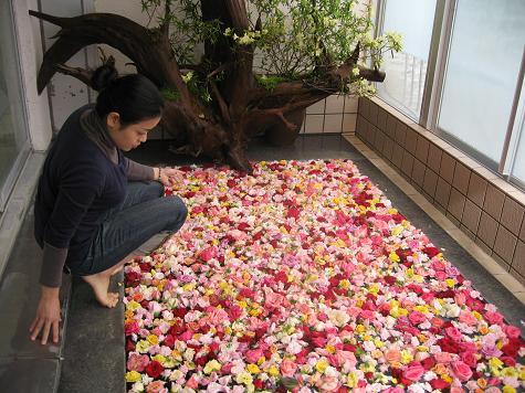 バラ風呂撮影_e0101917_8435190.jpg