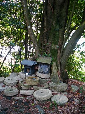 苔が付いているような古い木の根元に祠が置いてあり、その祠の下や周りには、石臼がいっぱい置いてあります。