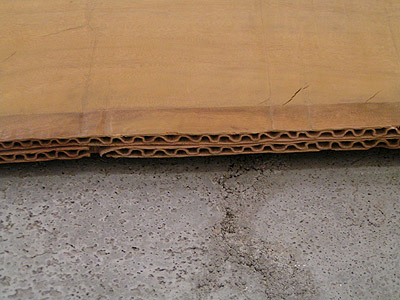 畳と段ボール_a0028451_2421938.jpg