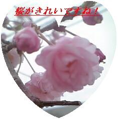 e0046477_1693125.jpg