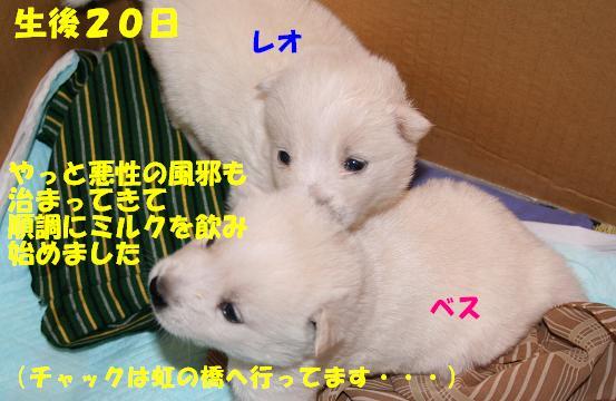 f0121712_16411040.jpg