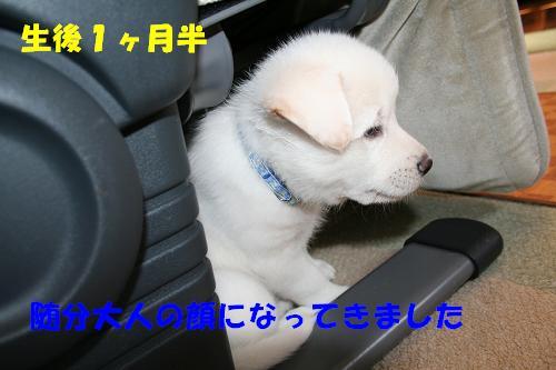 f0121712_16414848.jpg