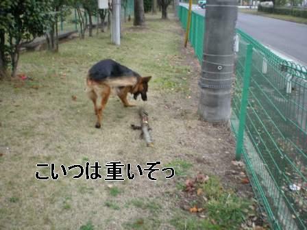 f0133723_15584966.jpg