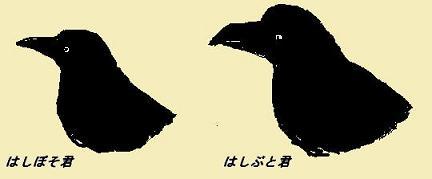 a0091680_18405316.jpg