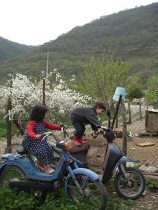 春は出産ラッシュです_f0106597_121510.jpg