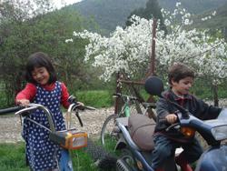 春は出産ラッシュです_f0106597_1235775.jpg