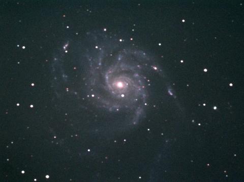 ボロボロですな、この気候 M101_c0061727_12532339.jpg