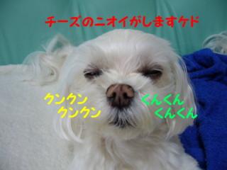 f0005727_15495533.jpg