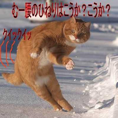 f0097434_15515564.jpg