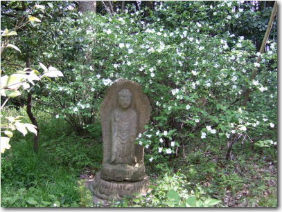 4月20日母屋の前の石仏