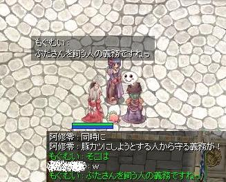 f0055549_1651123.jpg