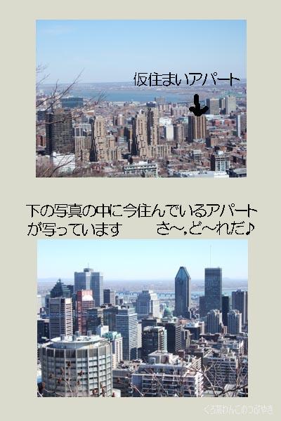 f0134885_5261948.jpg
