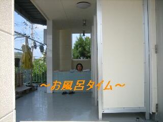 f0124006_21264393.jpg