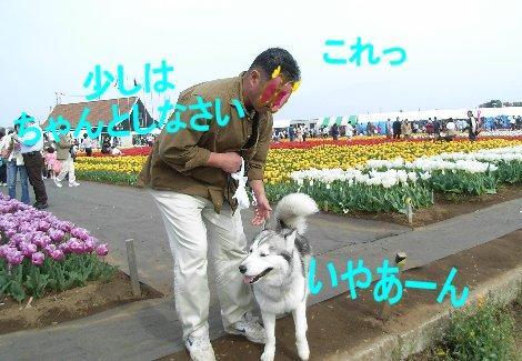 f0112407_15182810.jpg