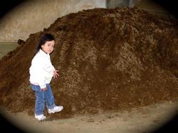 ゴリラ公園に土が搬入されました!!_b0065730_2174335.jpg